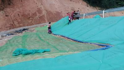 新丰县遥田镇维新至丹桂山旅游公路边坡绿化工程