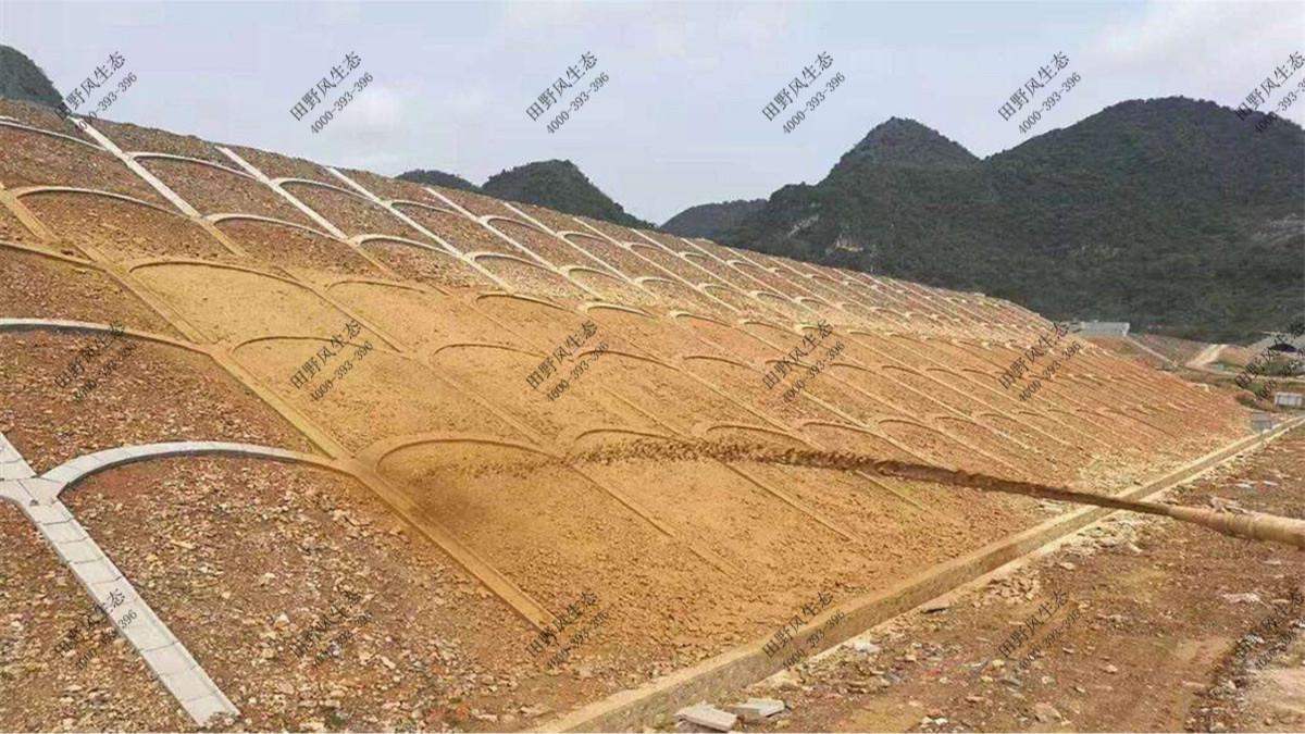 从化东莞高速惠州段高速公路边坡植草