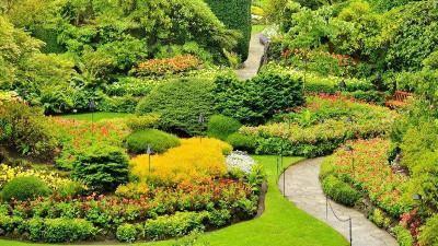 园林景观植物造景的四大原则,你知道吗?