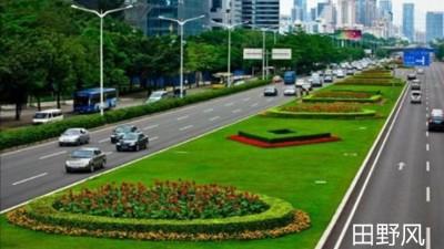 进入冬季,连云港进行园林绿化养护管理