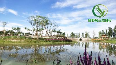 河道生态修复 守护一城水韵