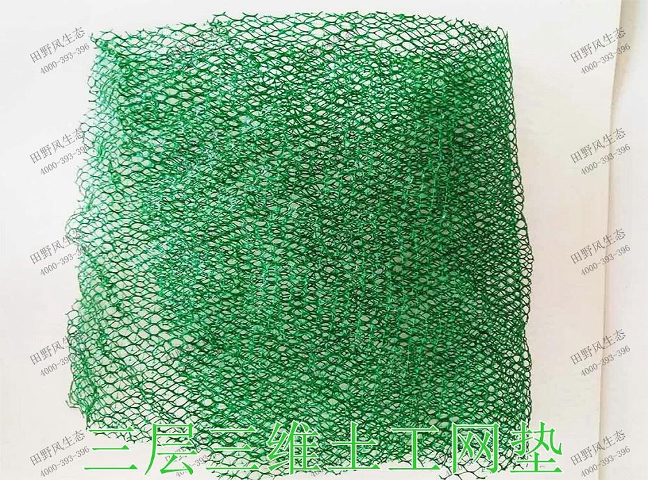 3三层三维土工网垫