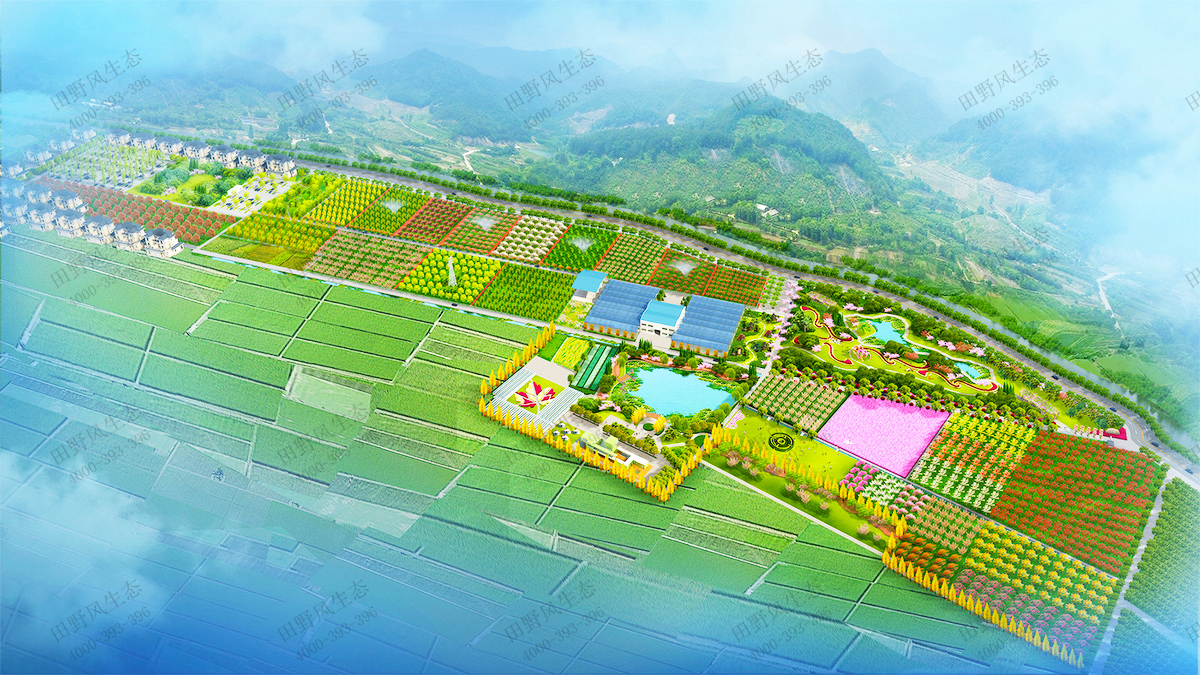 1苗木基地规划图