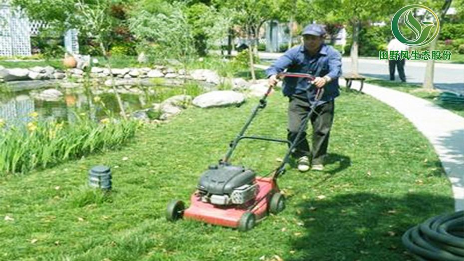 小区草地修剪,草地修剪养护