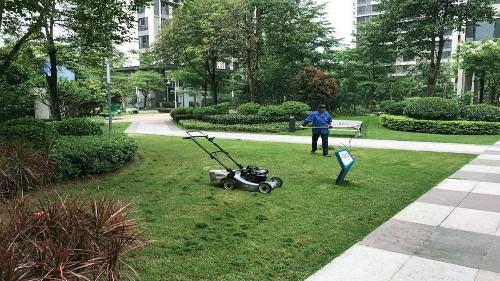 小区草坪修剪