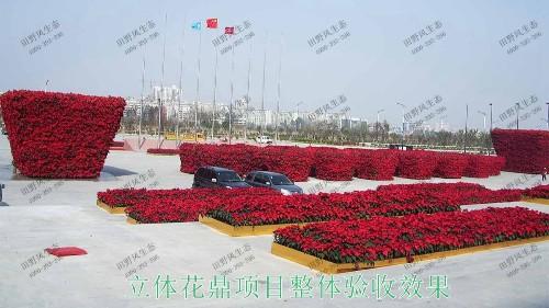 广州白云国际会议中心立体绿化工程