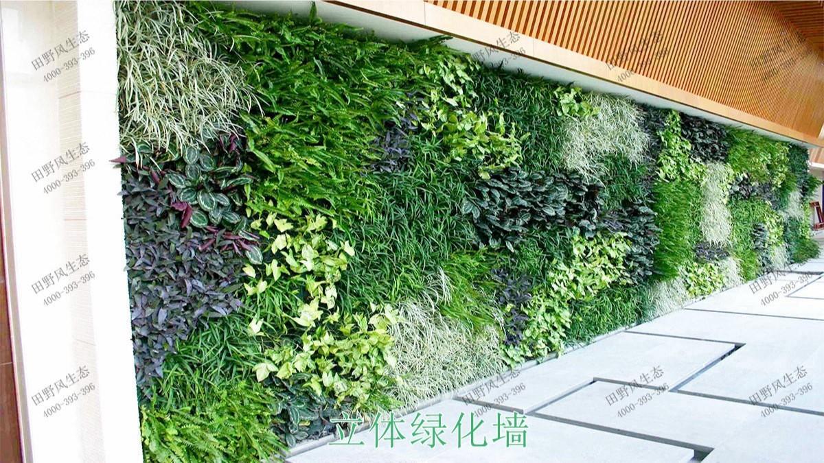 立体绿化更多案例