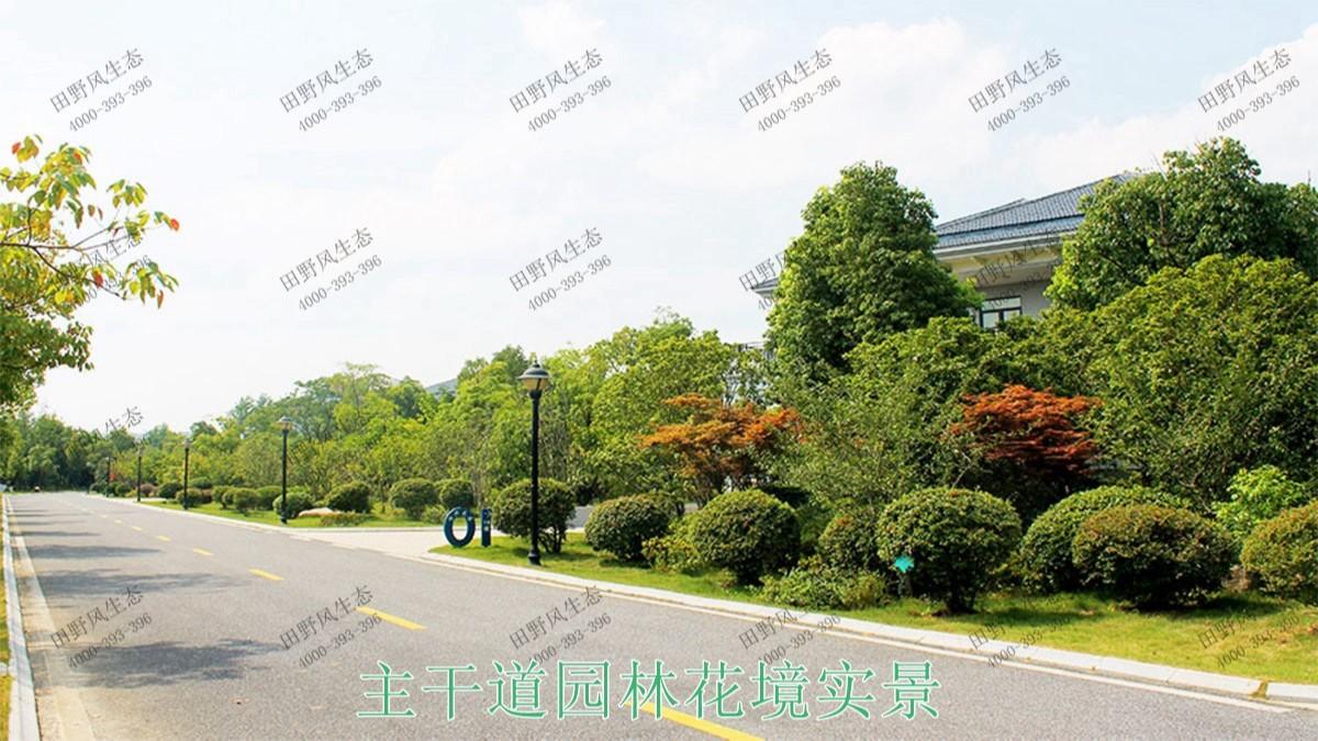 广州亚运城园林绿化建设工程