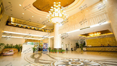广州维也纳酒店植物花卉租摆案例