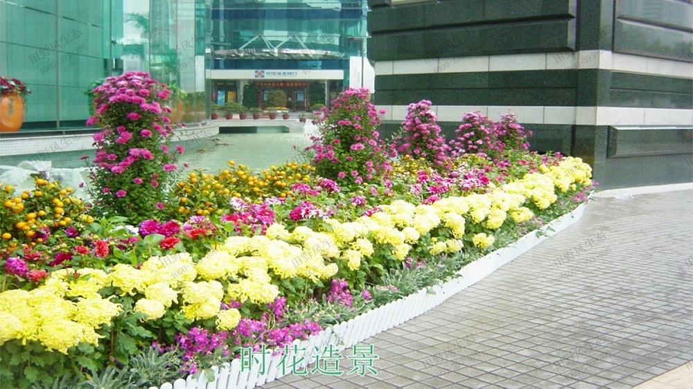 广州日健管理有限公司年花订购服务