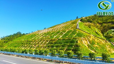 护坡绿化种草,绿化喷播机