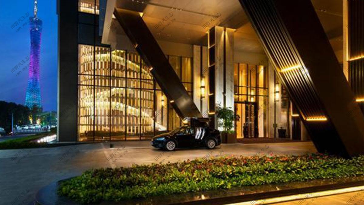 大型酒店绿植花卉出租,绿植租摆