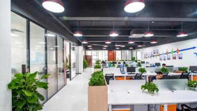 绿植租赁对办公室的重要性,你知道吗?