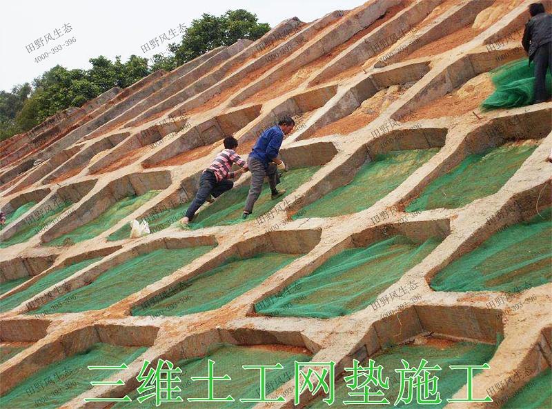 8三维土工网垫施工