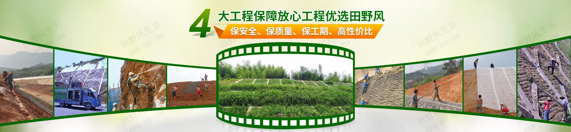 2生态修复工程
