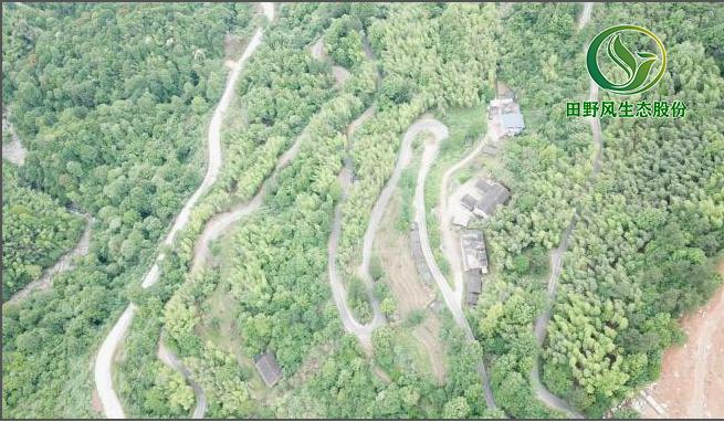 矿山修复,生态恢复