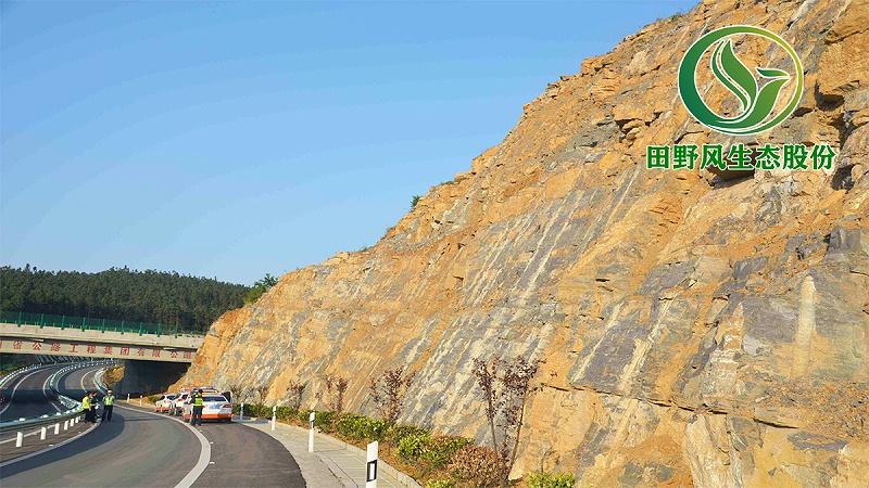 高速公路绿化,生态防护