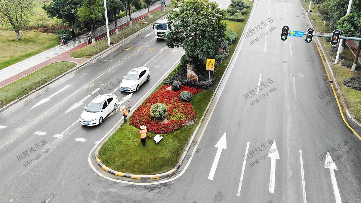 市政花卉景观工程