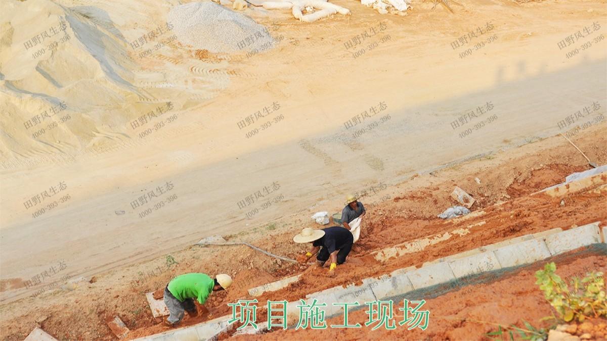 厦深铁路广东段铁路边坡挂网复绿工程
