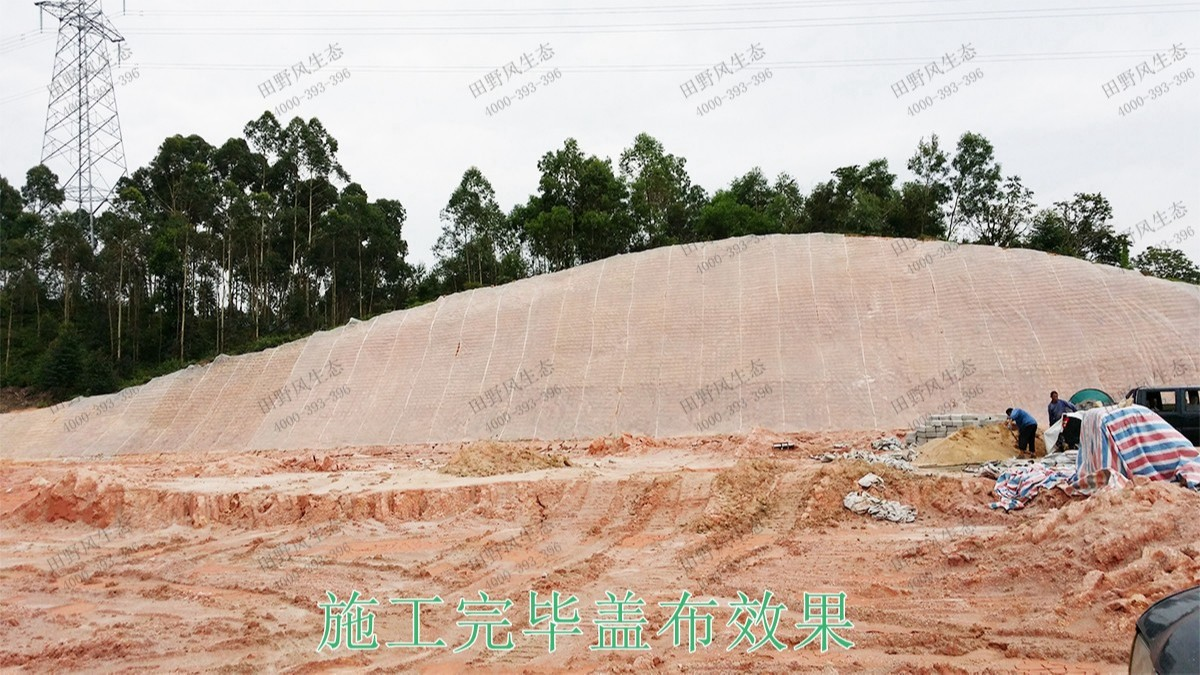 赣深铁路广东段铁路边坡绿化工程