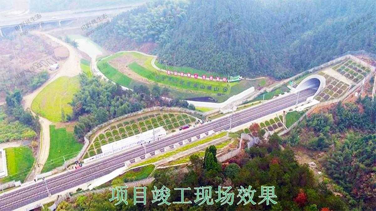 赣深铁路广东段铁路边坡修复工程