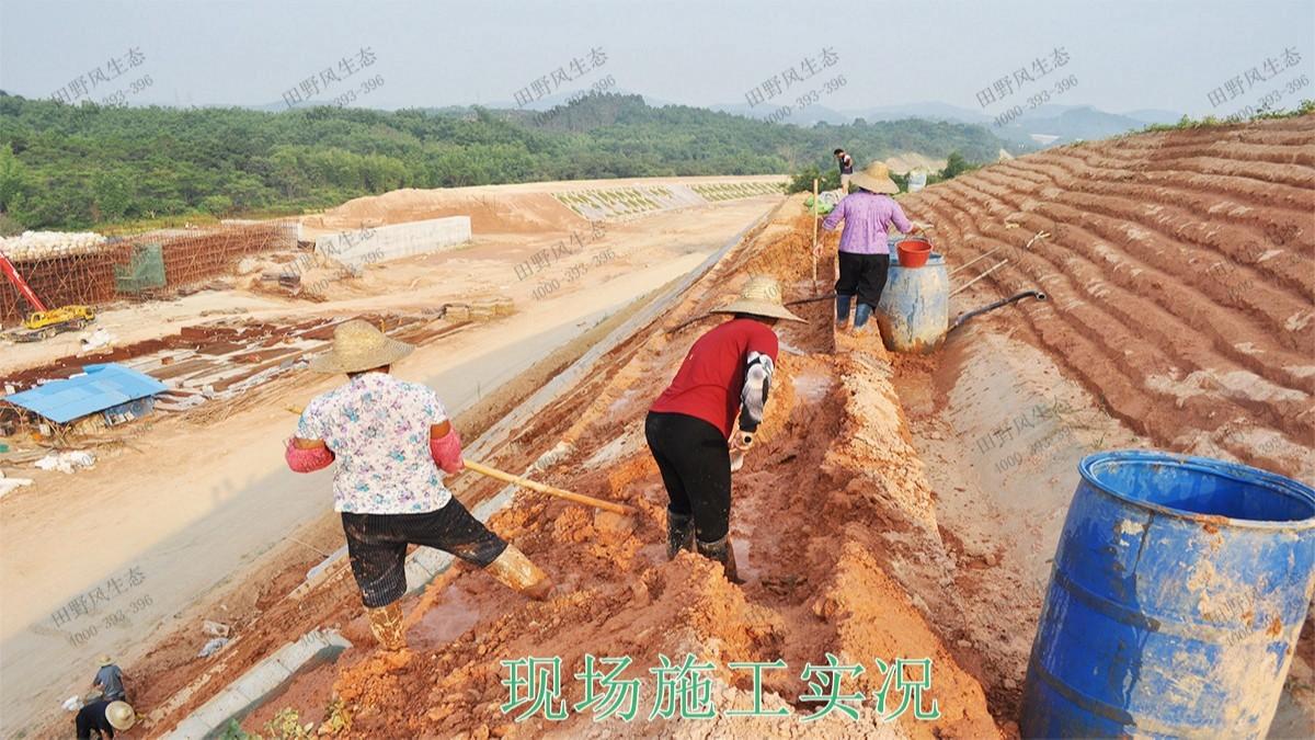 广深港铁路广东段铁路边坡修复工程