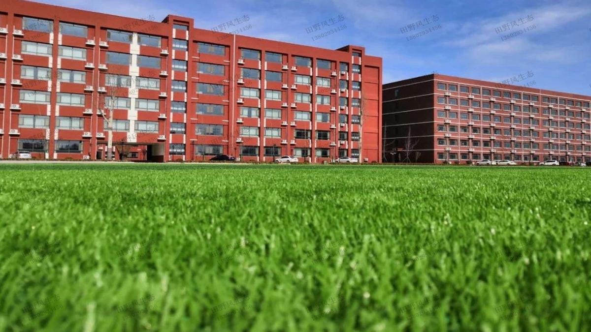 学校草坪养护