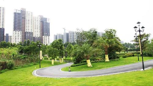 住宅小区绿化养护