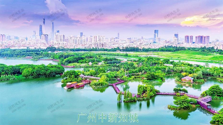 1广州中新知城