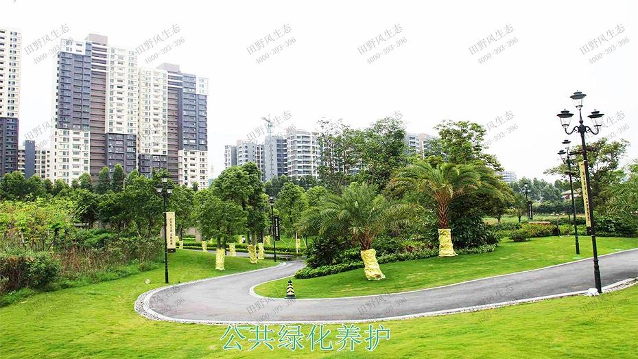 3公共绿化养护