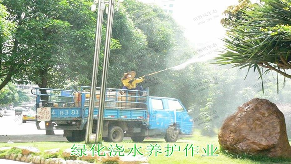 6绿化养护浇水作业