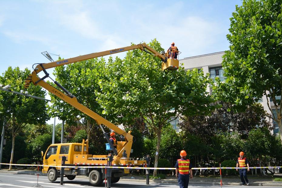 28高空大树修剪作业