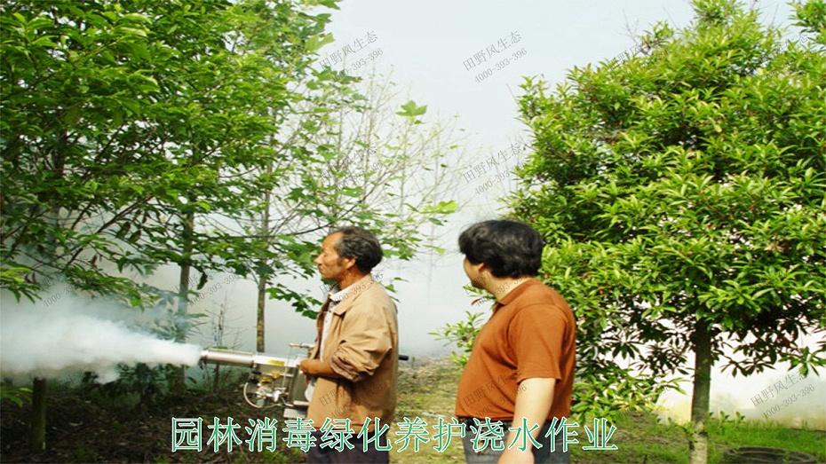 5园林消毒绿化养护浇水作业