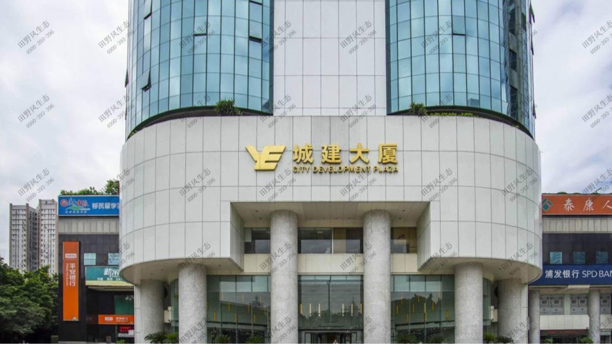 广州城建大厦办公室植物租赁案例