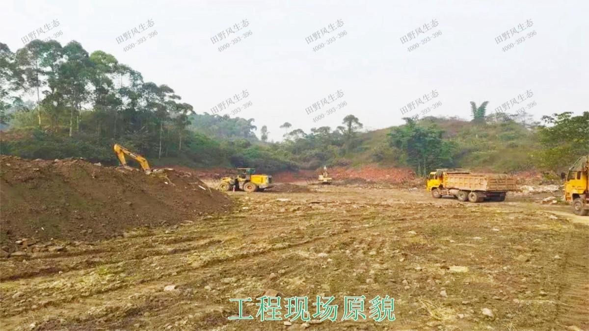江西瑞昌市景区花海工程