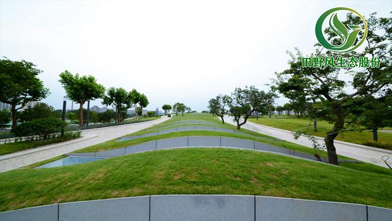 园林绿化,绿植养护