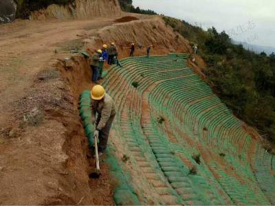 生态袋边坡绿化施工