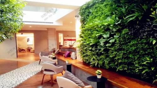 单位办公区绿化养护解决方案