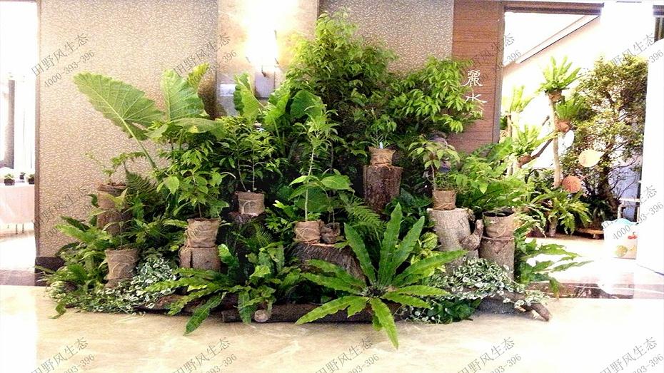 单位绿化养护,单位办公区绿化养护