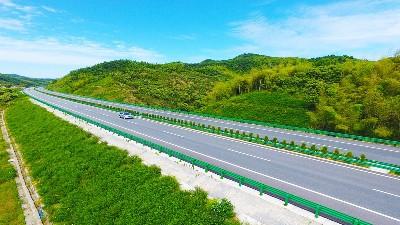 """田野风公路护坡打造""""绿色长廊""""美景"""