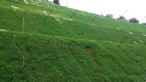 地质灾害修复