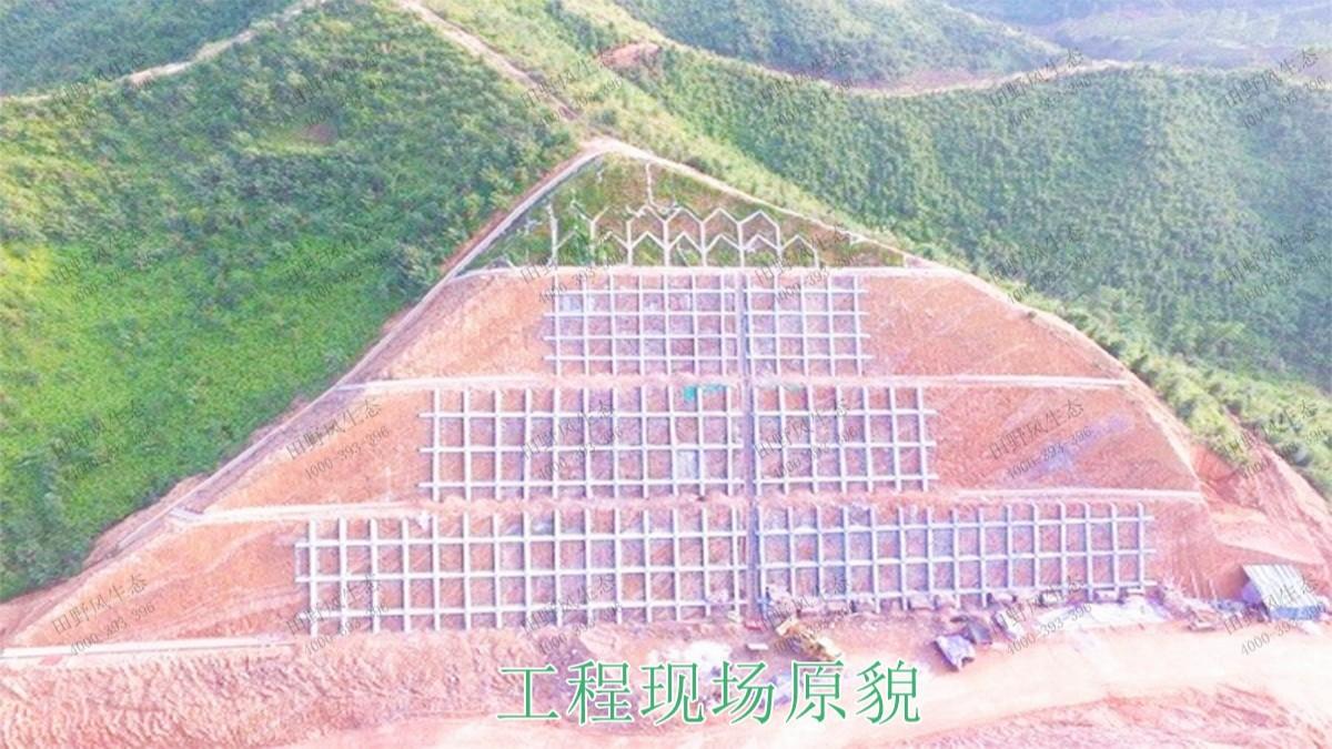 广东省高州市山体滑坡生态修复工程