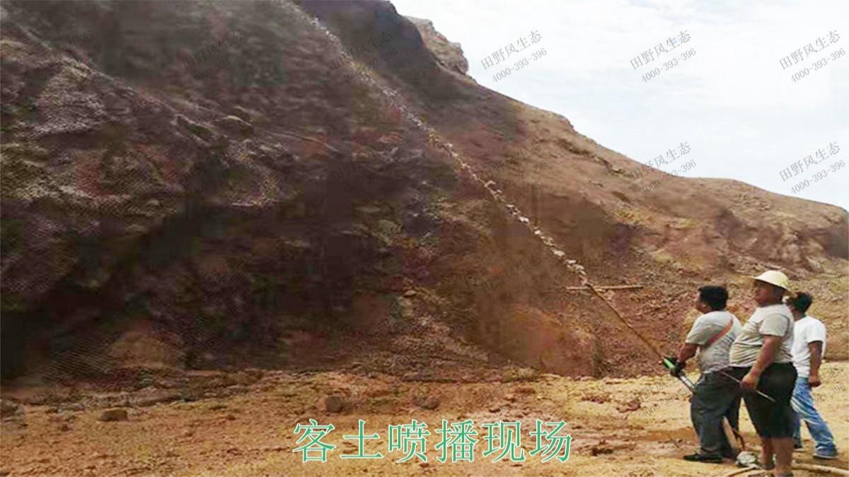 广西梧州山体滑坡生态修复工程
