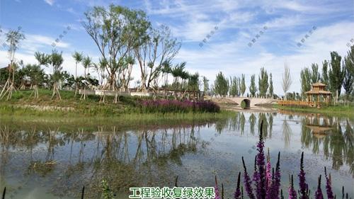 广州黄埔九龙涌河道生态治理工程