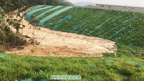 海大集团养猪基地生态修复工程