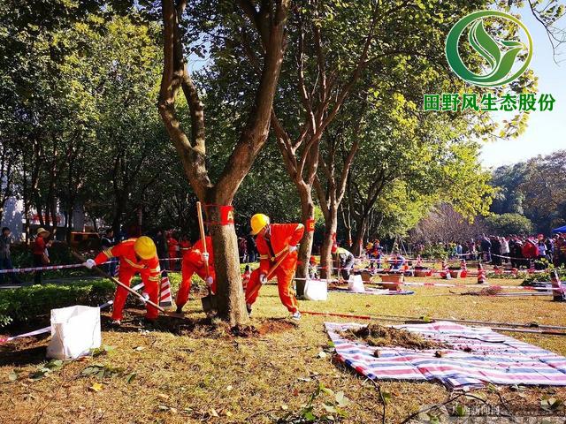 园林绿化,绿化养护