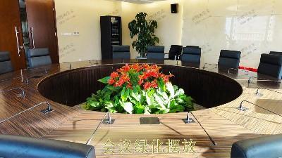 广州市东泰化工有限公司绿植租赁案例
