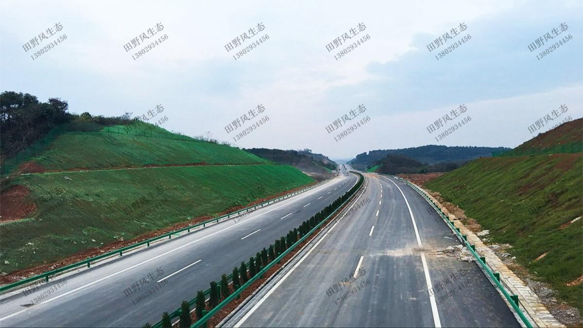 揭惠高速揭阳段高速公路边坡复绿工程