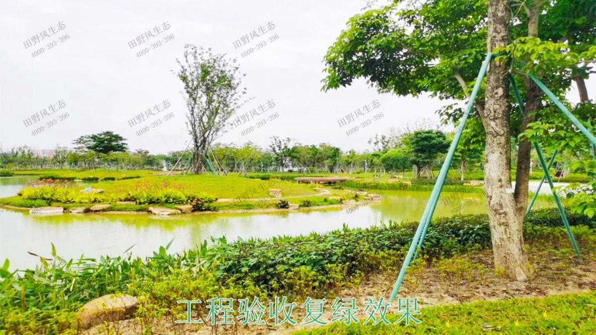 清城区银盏河道生态治理工程