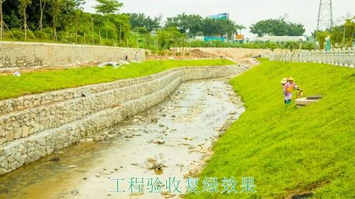 龙胜县和平河道河堤坡面挂网植草施工